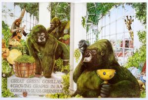 animalia-book-graeme-p1